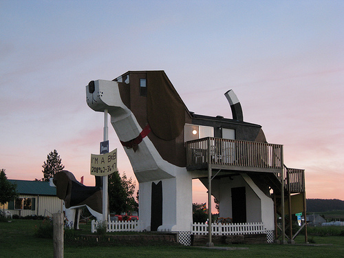 Treehouses And Big Dogs Are These The Worlds Quirkiest Cabins