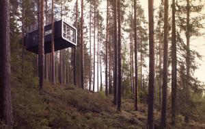 treehouses sweeden