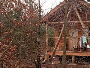 eco friendly log cabins