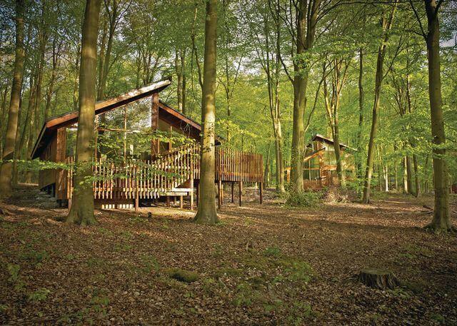 black forest lodges