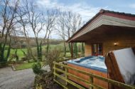 ivy leaf combe lodges